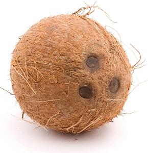 coconut x 12